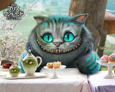 Poster_cat