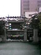 otonari_san